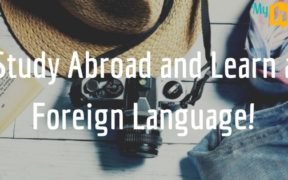 Foreign Language Abroad